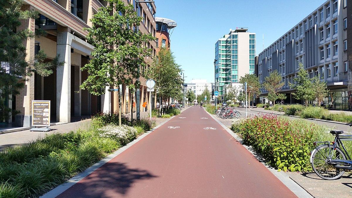 Makelaar Eindhoven Centrum Mint Makelaars